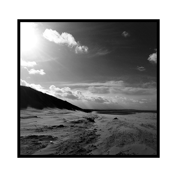 Black and white scottish blowing beach