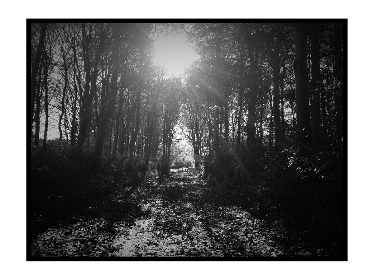 Black and white scottish path